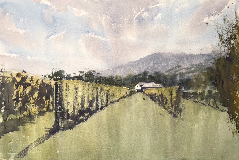 Watercolour painting of the Sugarloaf vineyard, Wales, with the Blorenge in the background by John Haywood