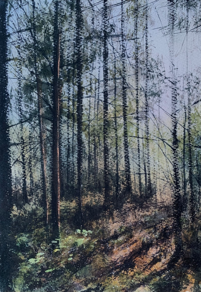 Watercolour painting of  bright sunlight streaming into a forest by artist John Haywood